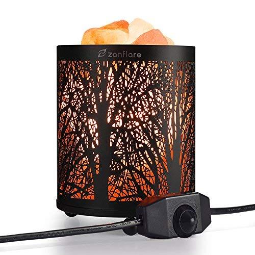 Salt Lamp, Natural Himalayan Salt Lamp, Zanflare Salt Night Light in Forest Design Metal Basket with Dimmer Switch, Birthday Gift