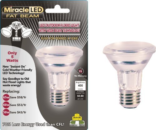 - Miracle LED 603005 5 Watt Fat Beam Wide Angle Flood Light Security Bulb, Cool White by MiracleLED