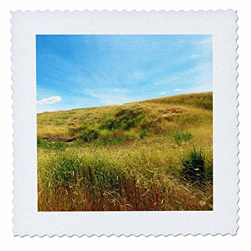 3dRose Jos Fauxtographee- Meadow on a Hill - A golden Meadow going up a hill in green and golden tones - 16x16 inch quilt square - Utah Field Hill