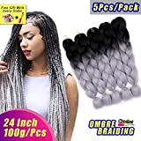 AIDUSA Ombre Colors Braiding Hair Ombre 5pcs Synthetic Braids Hair Extensions 24 Inch 2 Tone for Box Braids Crochet Braids 100g (#28 Black to Grey)