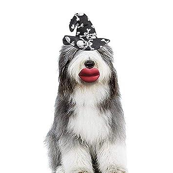 FOONEE - Diadema para mascota, diseño de perro con cabeza de mascota, accesorio para