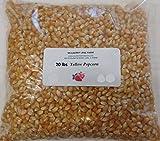 Yellow Popcorn Seeds 20 lbs (Twenty pounds) Kernels, Popping, Premium Gourmet, All Natural Non-GMO Gluten Free GF BULK