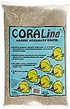 CaribSea Aquatics 008479001214 Carib Sea ACS00121 Caribbean Coral for Aquarium, 20-Pound