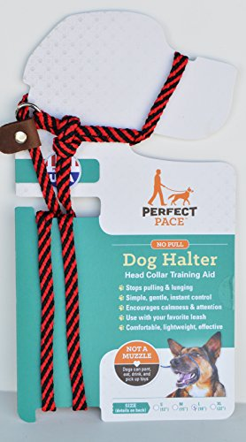 Perfect Pace Halter (Red/Black, L 65-100 lbs Neck up to 18″)