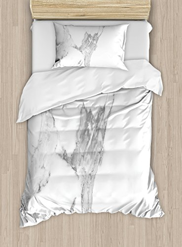 Marble Duvet Cover Set Twin Size by Ambesonne, Abstract Stained Hazy Pattern Natural Textured Architectural Background Theme, Decorative 2 Piece Bedding Set with 1 Pillow Sham, Grey White (Textured Naturals Pattern)