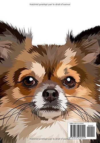 Cahier De Dessin Cahier Chihuahua Chien Chiot Carnet De Croquis