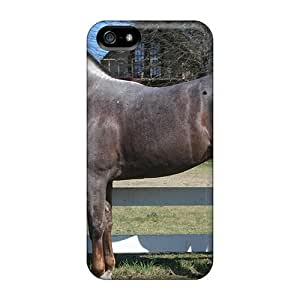 Flexible Tpu Back Case Cover For Iphone 5/5s - Quarter Horse Stallion