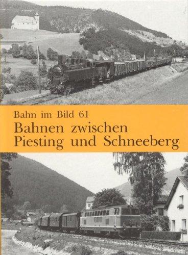 Bahnen zwischen Piesting und Schneeberg. Dieser Band behandelt die Strecken Leobersdorf - Gutenstein, Wiener Neustadt - Puchberg am Schneeberg und Bad Fischau-Brunn - Wllersdorf