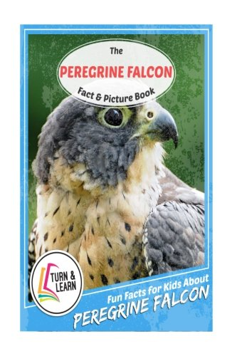 The Peregrine Falcon Fact and Picture Book: Fun Facts for Kids About Peregrine Falcon (Turn and Learn)
