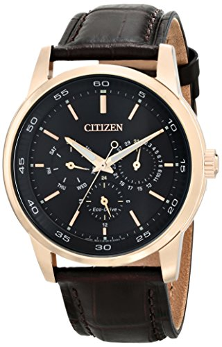 Citizen Men's Eco-Drive Stainless Steel Watch with Day/Date, BU2013-08E