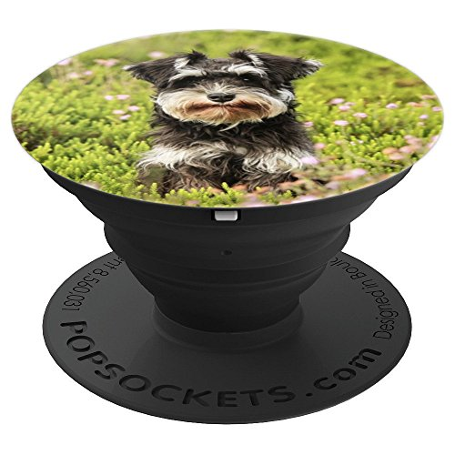 Miniature Schnauzer Photo Photography - PopSockets Grip and Stand for Phones and - Schnauzer Photo