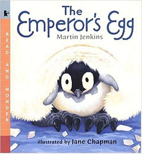 The Emperor's Egg Big Book: Read And Wonder Big Book Ebook Rar