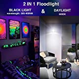 Onforu 2 Pack 30W LED Black Light with
