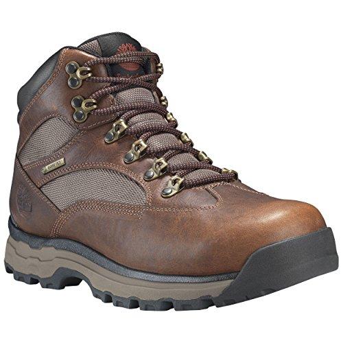 Timberland Chocorua Trail 2 Mid GTX Boot - Men's Medium Brown Full-Grain, 11.0 ()