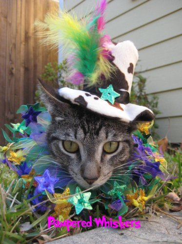 "Mad Hatter Party Top Hat for Cats and Dogs (4.5"" hat and 10-12"" party collar)"