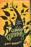 In a Glass Grimmly, Adam Gidwitz, 0606321357