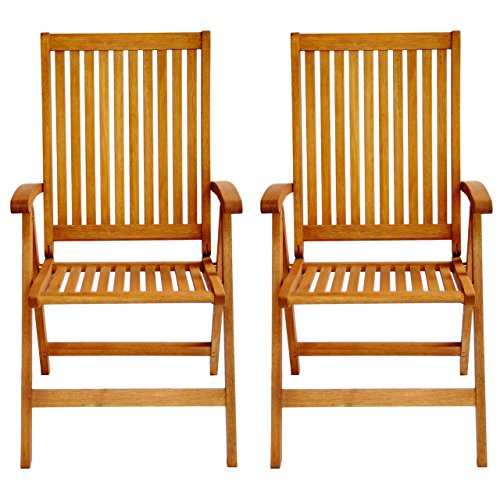 LuuNguyen Tullamore Outdoor Hardwood 5 Positions Reclining Folding Arm Chair (Natural Wood Finish), Set of 2