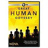 Buy NOVA: Great Human Odyssey DVD