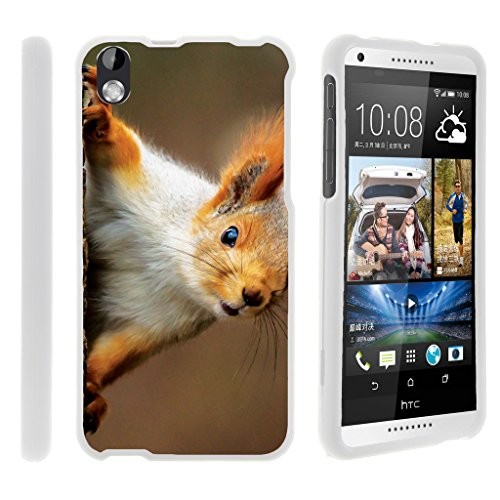 TurtleArmor | HTC Desire 816 Case | Desire 8 Case [Slim Duo] Slim Compact 2 Piece Hard Protector Snap On Case Rubberized Finish on White Animal Design - Red Squirrel