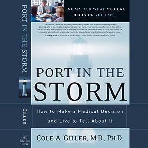 Port in the Storm Audiobook