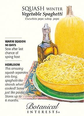 Winter Vegetable Spaghetti Squash Seeds - 3 grams