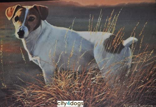 Fiddler s Elbow Jack Russell in Field Porch Doormat