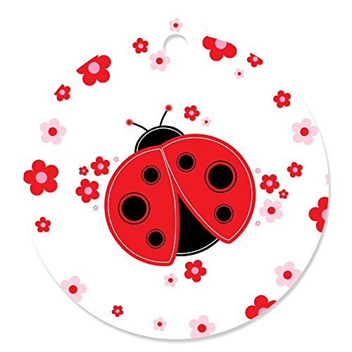 Modern Ladybug - Baby Shower or Birthday Party Favor Gift Tags (Set of -