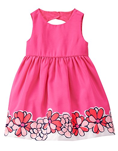 Gymboree Baby Toddler Girls' Floral Border Print Pink Dress, Babydoll Pink, 18-24 Months (Border Baby Pink)