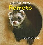 Ferrets (Great Pets)