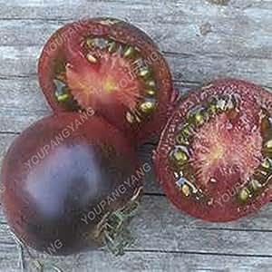 200pcs / Semillas de tomate bolsa de arco iris Raras semillas de tomate vegetal Bonsai orgánica y semillas de frutas Planta de tiesto en Casa y Jardín chocolate