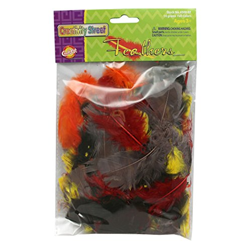 (Creativity Street Turkey Plumage Feathers, Fall Colors Assorted, Assorted Sizes, 14 Gram Bags, 12 Bags)