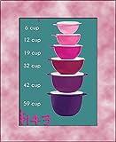 6 pc Tupperware Thatsa Bowl Set 6, 12, 19, 32, 42 & 59 Cups, Pink to Purple