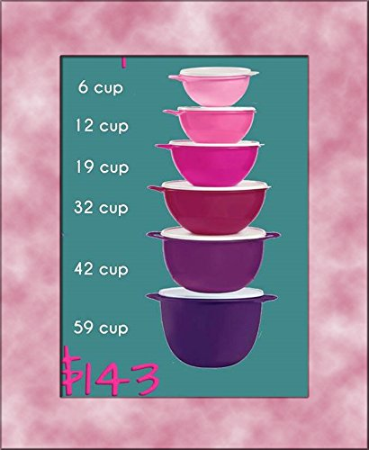 6 pc Tupperware Thatsa Bowl Set 6, 12, 19, 32, 42 & 59 Cups, Pink to Purple