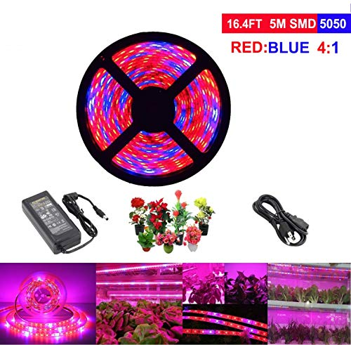 Plant Grow Light 5050 SMD LED Plant Strip Lights Indoor Growing Lamp 16.4ft Waterproof Flexible Soft Rope Light with 12V Adapter for Greenhouse Hydroponics Flower Seeds(Red Blue 4:1)