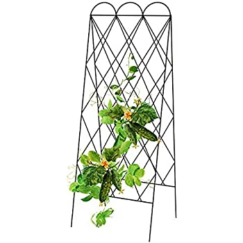 Amazon Com Panacea 90140 Rustic Heirloom Folding Trellis