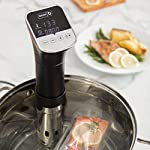 Sous Vide Dash Chef Series Stainless Steel Immersion Circulator with LED Digital Timer Display