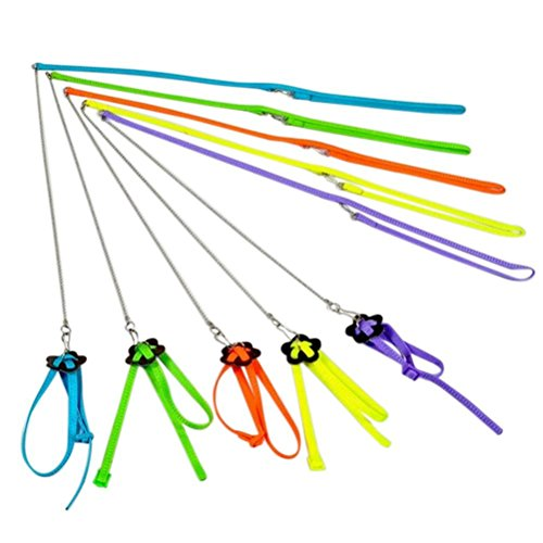 antibite adjustable harness and leash for bird parrot
