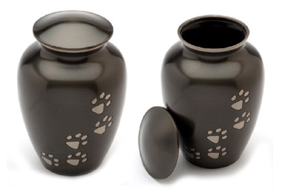 Medium Ebony Classic Series with greenical Pewter Paws Pet Urn 7 high for Pets up to 65 pounds.