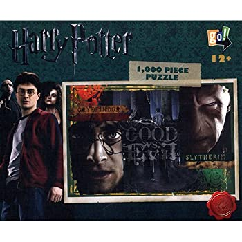 Harry Potter good vs evil poster