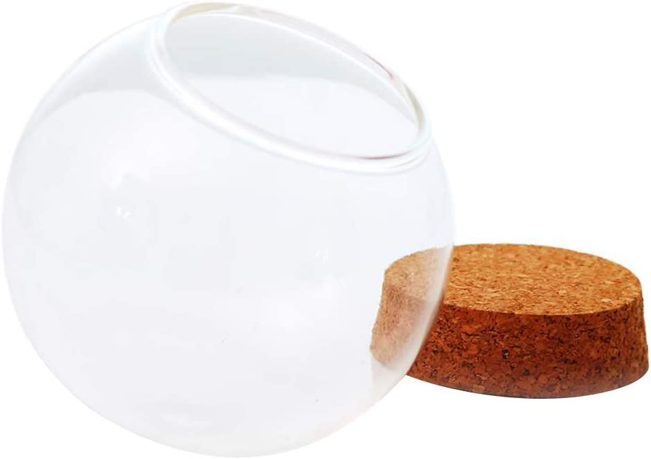 Tubayia - Campana de Cristal con Corcho de Madera, 3 Unidades: Amazon.es: Hogar