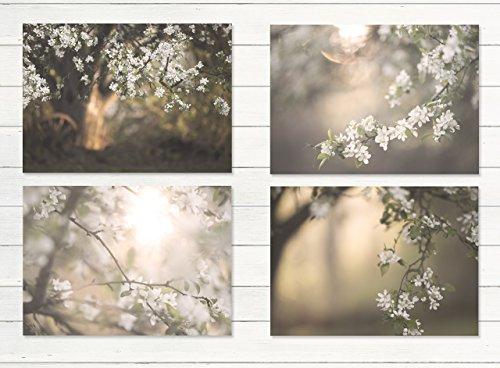 Apple Rustic (White Apple Tree Cottage Decor 4 - 8