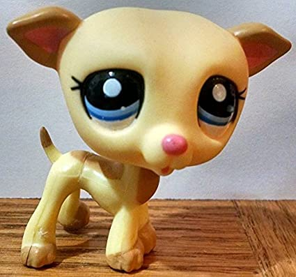 Collector Toy Retired Hasbro OOP Out of Package /& Print Yellow, Blue Eyes LPS Collectible Replacement Single Figure - Littlest Pet Shop Loose Greyhound #2041