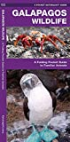 Galapagos Wildlife: A Folding Pocket Guide to Familiar Animals (Wildlife and Nature Identification)