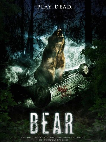 Bear (Animals That Begin With S)