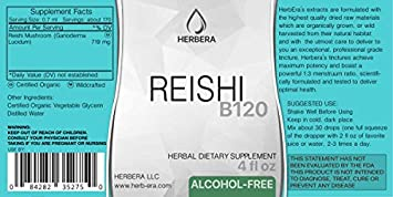 Reishi B120 Alcohol-Free Herbal Extract Tincture, Super-Concentrated Organic Reishi Mushroom Ganoderma Lucidum 4 fl oz