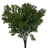 MagiDeal Green Artificial Plastic Plant 6 Branches Parsley Grass Home Wedding Decor