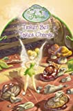 Tinker Bell Takes Charge: Chapter Book (Disney Fairies)