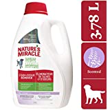 Nature's Miracle Stain & Odor Remover Just for Dogs, Pet Stain Eliminator, Lavender Scent, 3.7 Litres
