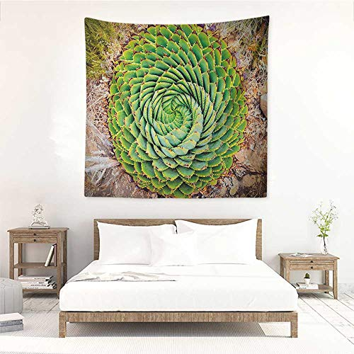 Willsd Plant Square Tapestry Hippie National Flower of Lesotho South of Africa Aloe Polyphylla Spinning Spiral Aloe Vera Literary Small Fresh 39W x 39L INCH Multicolor