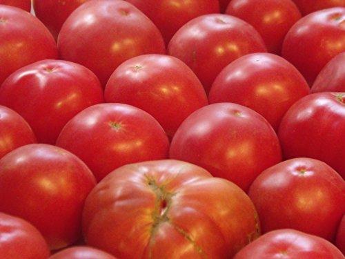 Beefsteak German Tomatoes (75+ German Johnson Tomato Seeds- Heirloom Variety)